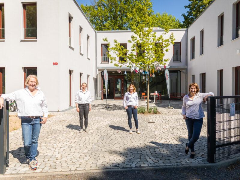 Kiwifalter (Tanja Neuss, Knusperfarben Fotografie Düsseldorf